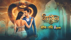 Naagin 3 | Colors Rishtey is back on DD Freedish